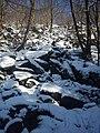 Skałki zimą - panoramio.jpg