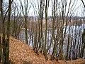 Skarpa nadbużańska - panoramio.jpg