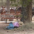 Sleeping Cowgirl Drover, Bryce Canyon, UT 9-2009 (6917723501).jpg
