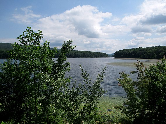 Sleepy Creek Wildlife Management Area - Wikiwand on