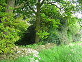 Small wood adjacent to footpath - geograph.org.uk - 178535.jpg