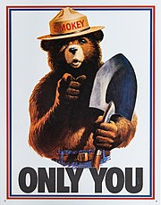 Smokey Bear Only You campaign hat