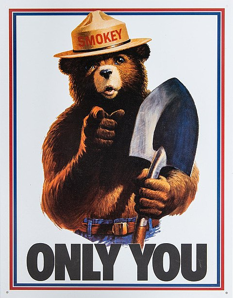 "1985 Smokey Bear poster with part of his admonition, ""Only you can prevent forest fires"". Smokey Bear Only You campaign hat.jpg"