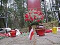 Smolensk, Katyn - panoramio (8).jpg