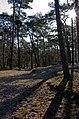 Soest, Netherlands - panoramio (8).jpg