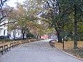 Sofia Center, 1000 Sofia, Bulgaria - panoramio.jpg
