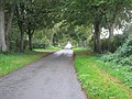 Southburgh Road - geograph.org.uk - 276676.jpg