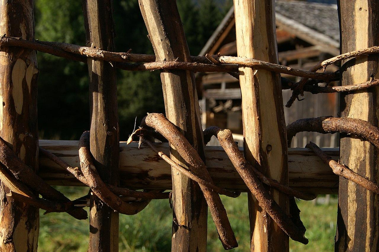 Zaun Wikiwand