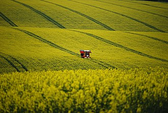 Poverty - Spreading fertilizer on a field of Rapeseed near Barton-upon-Humber, England