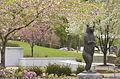 Springtime Bear (4013466651).jpg