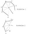 Ssap-vectors es.png