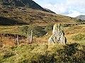 Standing stone, Glen Almond - geograph.org.uk - 598209.jpg