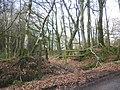 Start of footpath, on Stafford Hill - geograph.org.uk - 1776605.jpg
