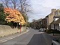 Station Road, Golcar - geograph.org.uk - 408503.jpg