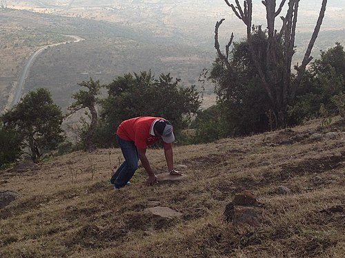 Climbing Ngong Hills
