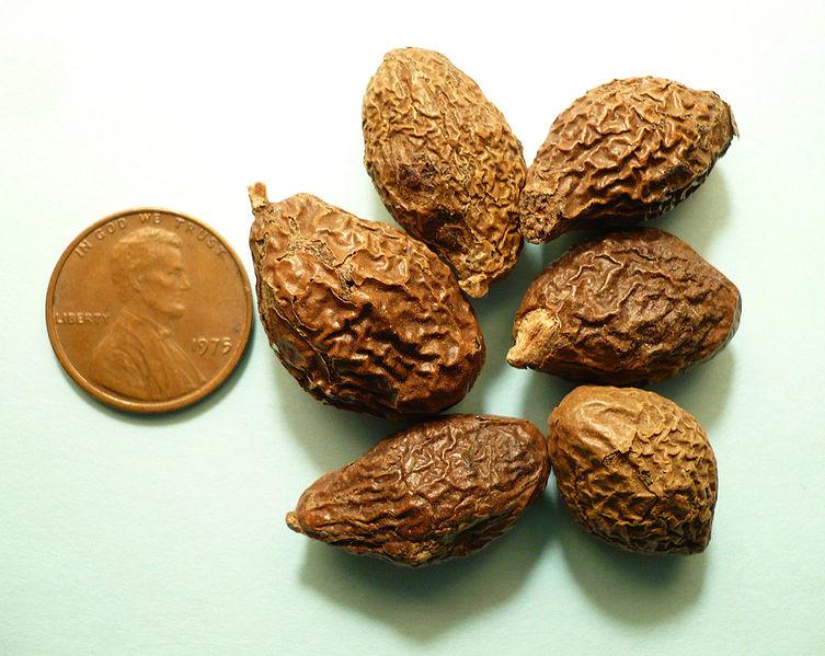 Le fruit Pang Da Hai