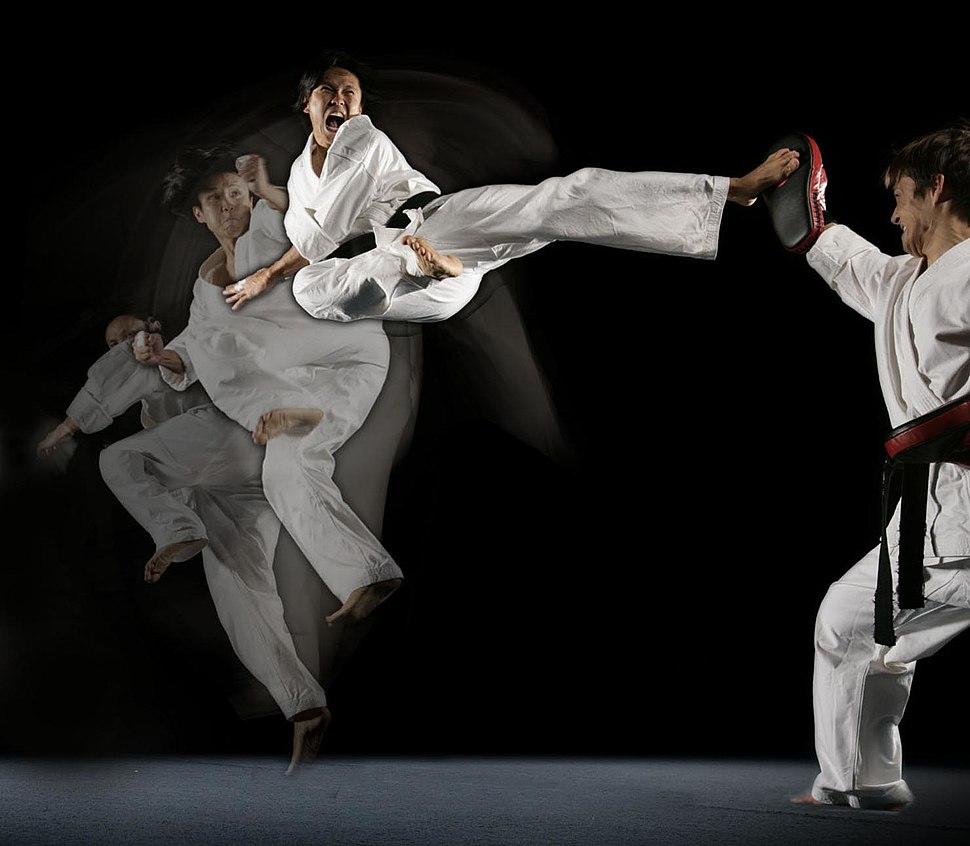 Steven Ho Martial Arts Kick