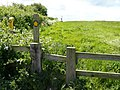 Stile and path at Derelict farm - geograph.org.uk - 1340304.jpg