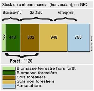 Français : Stock de carbone mondial (hors océa...