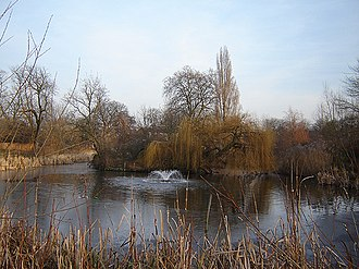 Hackney Brook - The eastern lake at Clissold Park, Stoke Newington, one of two that mark the original course of the Hackney Brook. It is, however, fed by mains water from the fountain seen here. (January 2006)