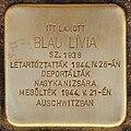 Stolperstein für Blau Livia (Lendava).jpg