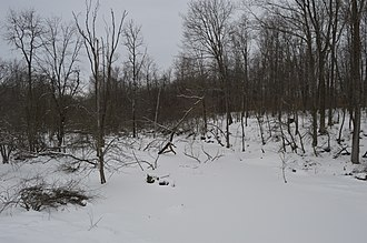 Beaver Township, Crawford County, Pennsylvania - Stone Run, frozen by winter weather