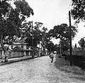 Straat in Saint-Laurent-du-Maronie in Frans- Guyana, Bestanddeelnr 252-6640.jpg