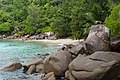 Strand Anse Major Mahe Seychellen (38723220725).jpg