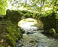 Stream and old bridge on Exmoor, Devon (2545904416).jpg