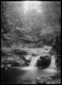 Stream running through bush, with a small waterfall in the foreground. ATLIB 291881.png