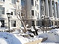 Student-Programmer Statue in winter.jpg