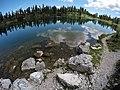 Sulle sponde del lago Federa.jpg