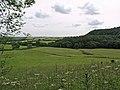 Surgate Brow Wood - geograph.org.uk - 491556.jpg