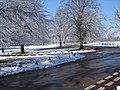 Sutton Park in April Snow - geograph.org.uk - 1569966.jpg