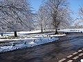 Sutton Park in April Snow - geograph.org.uk - 1569966.jpg