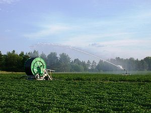 Hose irrigation