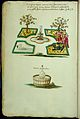 Symbolic alchemical watercolour drawings Wellcome L0033068.jpg