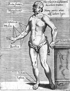 """T. Malfi, """"Il barbiere...libri tre"""", 1626 Wellcome L0008230.jpg"""