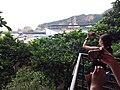 TW 台灣 Taiwan 新台北 New Taipei 萬里區 Wenli District 野柳地質公園 Yehli Geopark August 2019 SSG 17.jpg