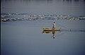 Taungthaman Lake.jpg