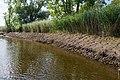 Technisch-biologische Ufersicherung an der Wümme, Versuchsstrecke 2 (50677955823).jpg