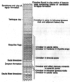 Terlingua stratigraphic column.png