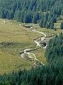 The Afon Tywi near Moel Prysgau, Powys - geograph.org.uk - 1521560.jpg