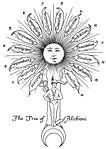 The Leaves of Hermes Sacred Tree.jpg