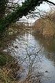 The River Derwent Near Ambaston Grange - geograph.org.uk - 1183504.jpg