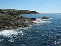 The south west coast of Bardsey - geograph.org.uk - 903119.jpg