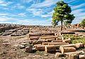 Timgad (Batna).jpg
