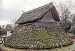 Simple thatched hut with the thatching going all the way to the ground.