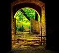 Toscana - Tuscany - Flickr - allegra.jpg