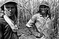 Trabalhador rural (2) (13899017223).jpg